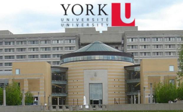 Università di York sotto incidente di furto di dati